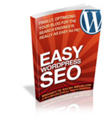 Product picture  Easy WordPress SEO Guide